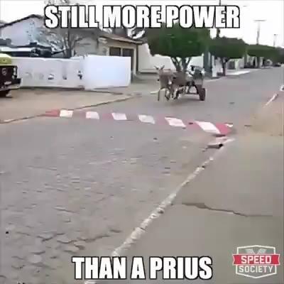 Cand te crezi in Furios si Iute dar tu mergi cu caruta