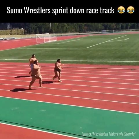 Cum alearga luptatorii de sumo